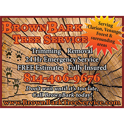 Brown Bark Tree Service in Knox, PA