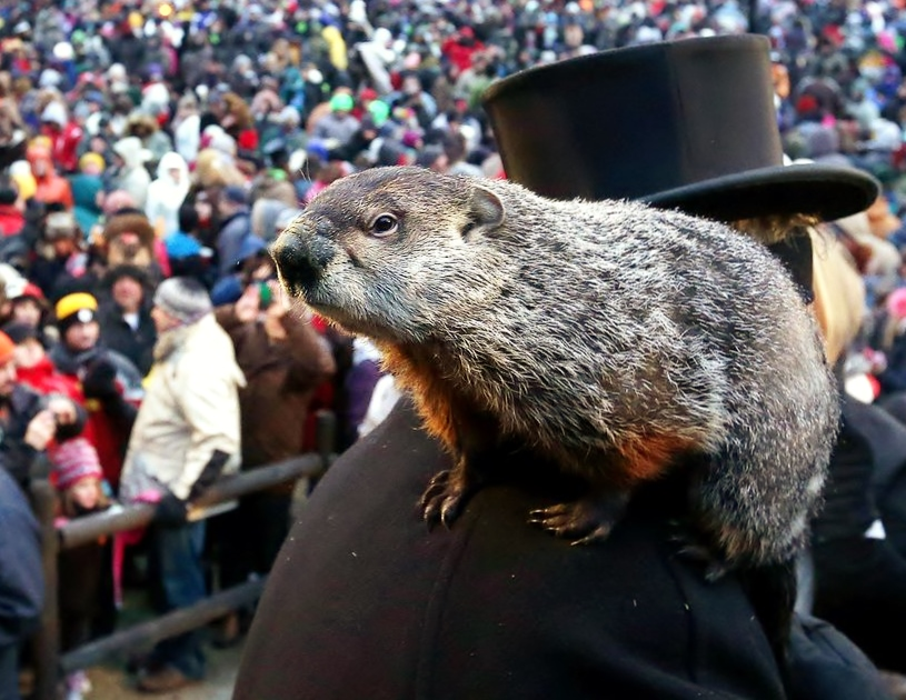 Groundhog-day-facts-01_76030_990x742_283_589048276db1
