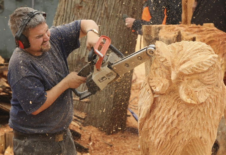 Rd annual woodcarvers show competition knox area