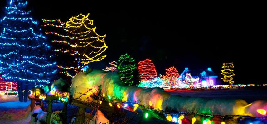 Oglebay Festival of Lights in Wheeling WV - Oglebay Festival Of Lights In Wheeling WV - Knox Area Information